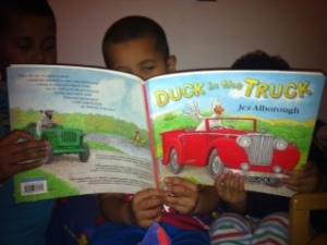 Duck in truck